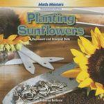 Planting Sunflowers : Represent and Interpret Data - Rebecca Bellavia