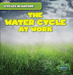 The Water Cycle at Work : Cycles in Nature - George Pendergast