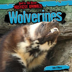 Wolverines - John O'Mara