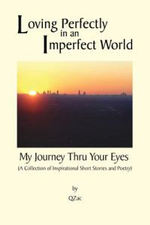 Loving Perfectly in an Imperfect World - My Journey Thru Your Eyes - Qzac