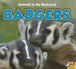 Badgers - Aaron Carr