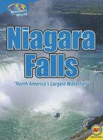 Niagara Falls - Steve Goldsworthy