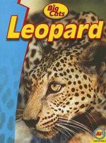 Leopard - Steve Goldsworthy