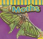 Moths - Aaron Carr