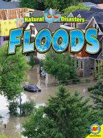 Floods : Natural Disasters - Jennifer Howse