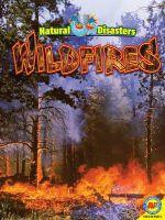 Wildfires - Pamela McDowell