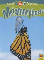 Metamorphosis - Megan Kopp