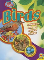 Birds - Steve Goldsworthy