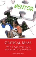 Critical Mass : Why a