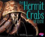 Pet Hermit Crabs Up Close - Jeni Wittrock