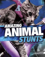 Amazing Animal Stunts : Wild Stunts - Lisa M Simons