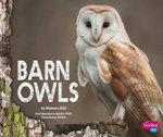 Barn Owls : Owls