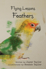 Flying Lessons : Feathers - Jayne Taylor