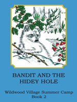 Bandit and the Hidey Hole - Joann Ellen Sisco