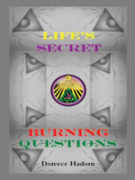 Life's Secret Burning Questions - Doreece Hadorn