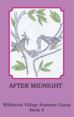 After Midnight - Joann Ellen Sisco