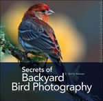 Secrets of Backyard Bird Photography - J. Chris Hansen