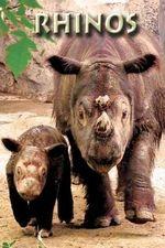 Rhinos - Ann Levy