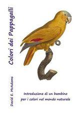 Colori Dei Pappagalli : Introduzione a Colori Per Bambini, Edition Per I Mercati Espansi - David E McAdams
