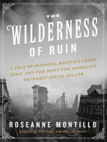 The Wilderness of Ruin : A Tale of Madness, Fire, and the Hunt for America's Youngest Serial Killer - Roseanne Montillo