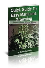 Quick Easy Guide to Easy Marijuna Growing (Includes Platinum Edition Formula) - James Kushfella