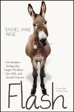 Flash : The Homeless Donkey Who Taught Me about Life, Faith, and Second Chances - Rachel Anne Ridge