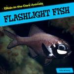 Flashlight Fish - Caitie McAneney