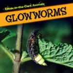 Glowworms : Glow-In-The-Dark Animals - Kristen Rajczak
