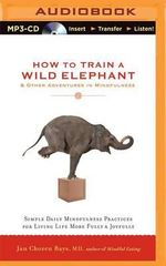 How to Train a Wild Elephant & Other Adventures in Mindfulness : Simple Daily Mindfulness Practices for Living Life More Fully & Joyfully - Jan Chozen Bays