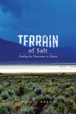 Terrain of Salt : Finding the Numinous in Nature - Melvin Adams