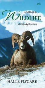 A Field Guide to Wildlife of the Rocky Mountains : A Seasonal Guide to Wildlife Encounters in Natural... - H?lle Flygare