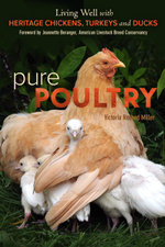 Pure Poultry : Living Well with Heritage Chickens, Turkeys and Ducks - Victoria Redhed Miller