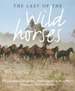 The Last of the Wild Horses - Martin Harbury