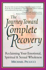 Journey Toward Complete Recovery : Reclaiming Our Emotional, Spiritual and Sexual Wholeness - Michael Picucci