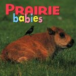Prairie Babies : Prairie Animals - Creative Publishing International