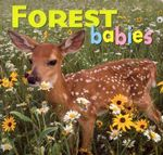 Forest Babies : Animal Babies - Creative Publishing International