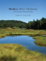 Shallow Water Dictionary : A Grounding in Estuary English - John R. Stilgoe
