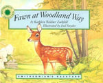 Fawn at Woodland Way - Kathleen Weidner Zoehfeld