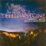 The Spirit of Yellowstone : The Cultural Evolution of a National Park - Judith L. Meyer