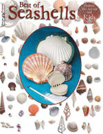 Best Book of Seashells : Projects for Adults and Kids - Suzanne McNeill