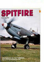 Spitfire : RAF Fighter - Ron Dick