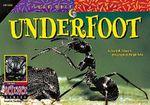 Underfoot - David M Schwartz