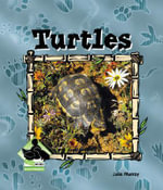 Turtles - Julie Murray