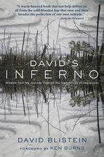 David's Inferno : Wisdom from My Journey Through the Dark Woods of Depression - David Blistein