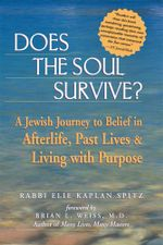 Does the Soul Survive? : A Jewish Journey to Belief in Afterlife, Past Lives & Living with Purpose - Elie Kaplan Spitz