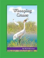 Whooping Cranes : Reading Level 3 - Myrl Shireman