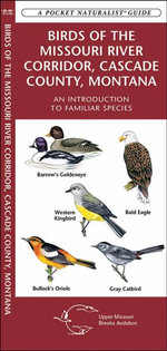 Birds of the Missouri River Corridor, Cascade County, Montana : An Introduction to Familiar Species - Senior James Kavanagh