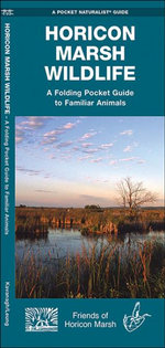 Horicon Marsh Wildlife : An Introduction to Familiar Species - James Kavanagh