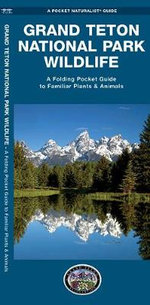 Grand Teton National Park Wildlife : An Introduction to Familiar Species - Senior James Kavanagh