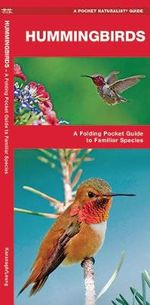 Hummingbirds : A Folding Pocket Guide to North American Species - Senior James Kavanagh